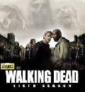 DVD The Walking Dead SEASON 6  ��������� �Ѻ�� DVD 2��  ep1-8 �����觫ի�� �ѧ��診