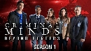 DVD ���������  Criminal Minds: Beyond Borders Season 1 �Ѻ�� DVD 4 �蹨�